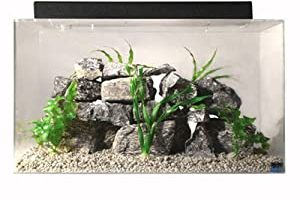 [Latest 2021] Top 10 Best 20 Gallon Fish Tank Kit For 2021