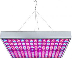 Best LED Refugium Light