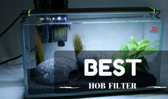 Top [2021] 10 Best HOB (Hang On Back) Filter For Aquariums, Planted, Reef Tanks