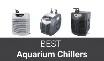 [2021] Top 10 Best Aquarium Chillers to Maintain Optimum Water Temperature