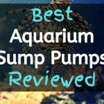 [2021] Top 10 Best Aquarium Sump Pump For Sump Equipped Marine Systems