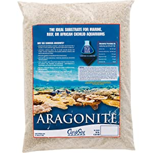 Best Sand For Reef Tank