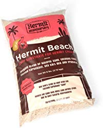 Best Substrate For Hermit Crabs
